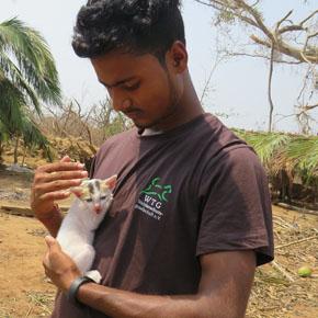 soforthilfe-indien-odisha-zyklon-tierrettung-welttierschutzgesellschaft-290x290