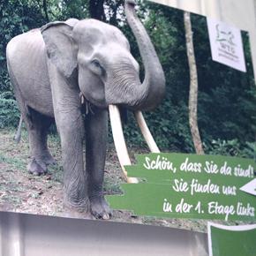 sumatra-elefanten-patrouillen-vortrag-stremme-welttierschutzgesellschaft