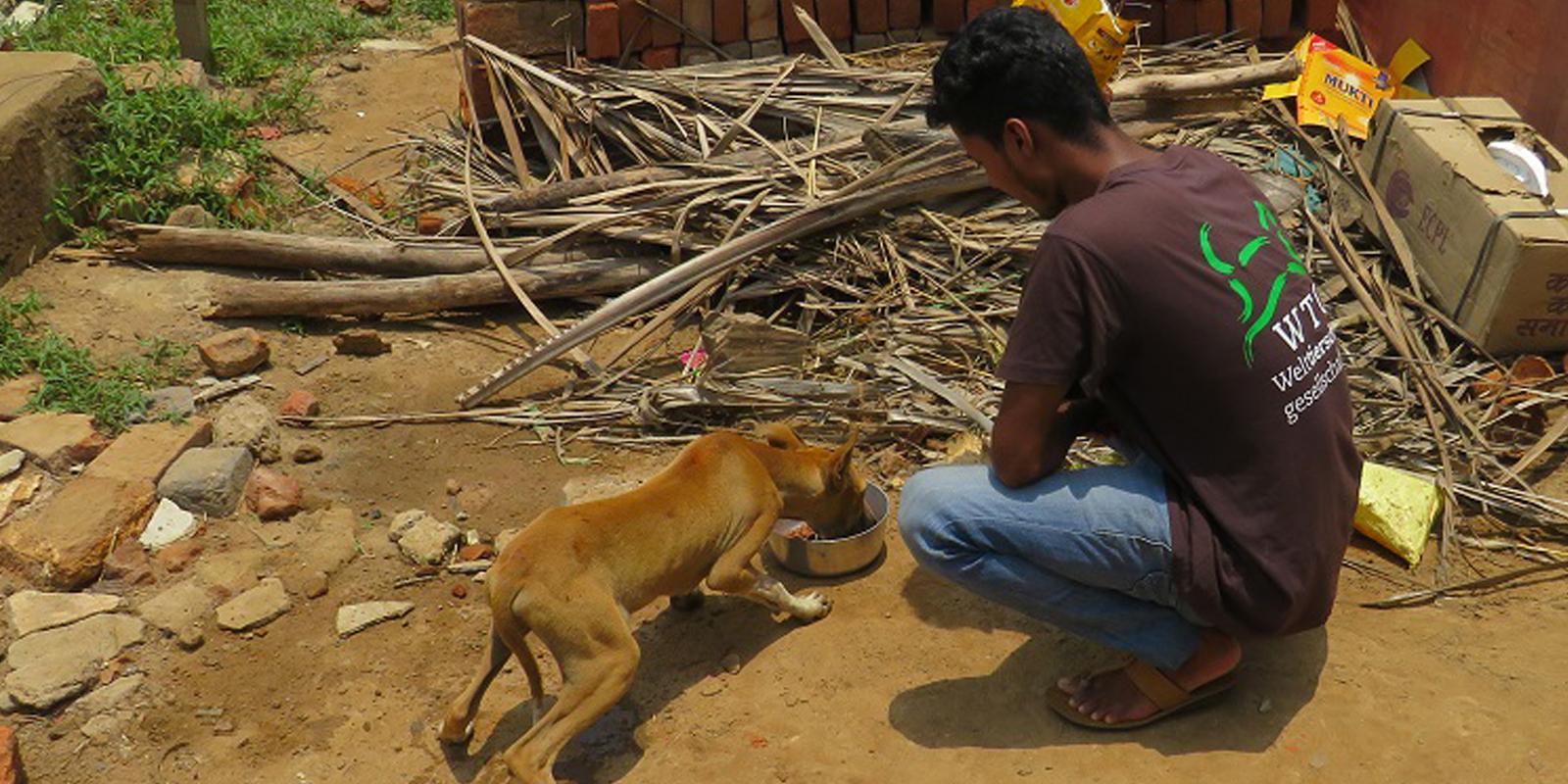 Soforthilfe in Bildern: Grundversorgung für die Tiere