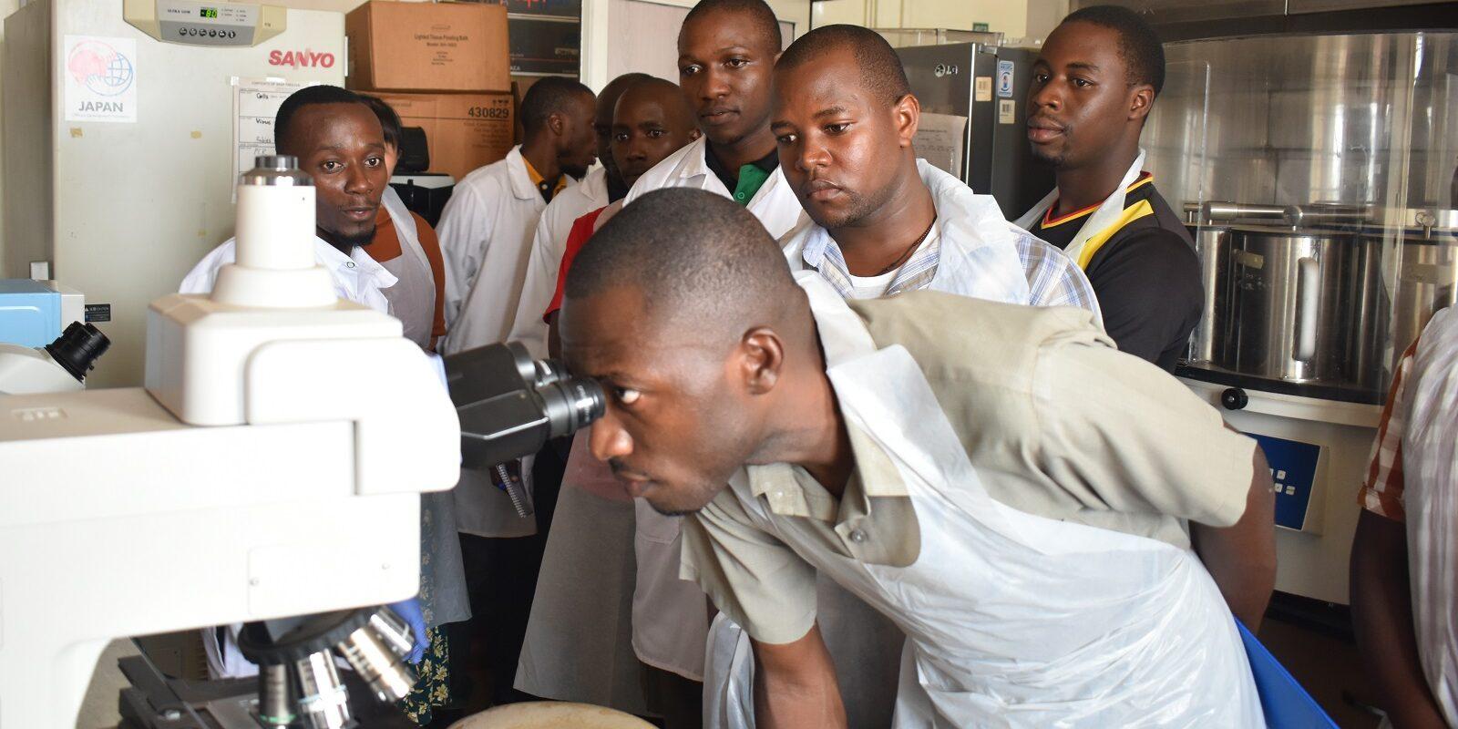 Leptospirose in Uganda: Datenerhebung kombiniert mit praktischen Übungen