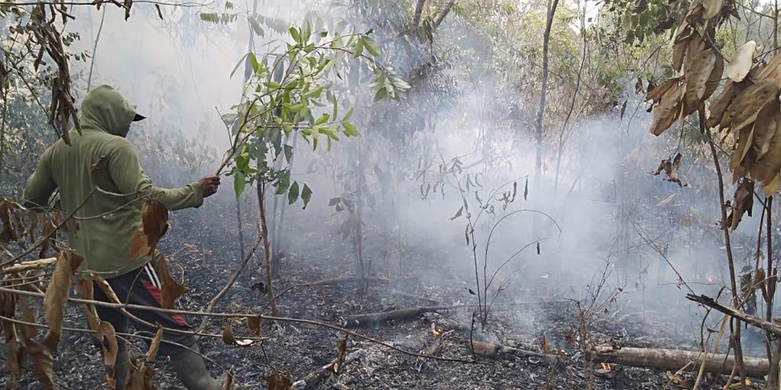 Extreme Trockenzeit auf Sumatra: Immer wieder müssen die Mahouts ausrücken, um Feuer zu löschen