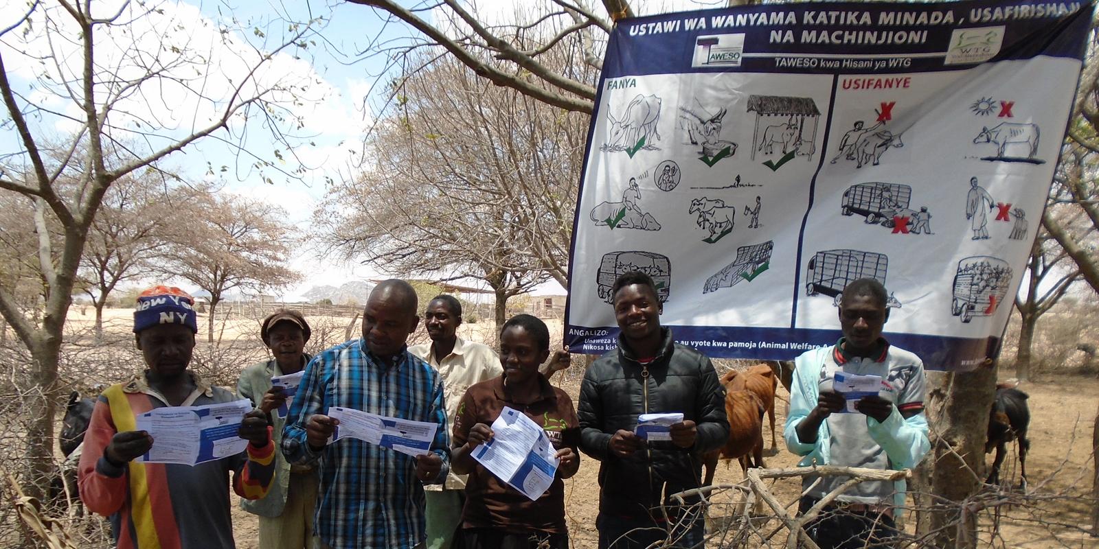 Mehr Tierwohl auf Tansanias Märkten: Anschauliches Informationsmaterial zum richtigen Umgang mit den Tieren