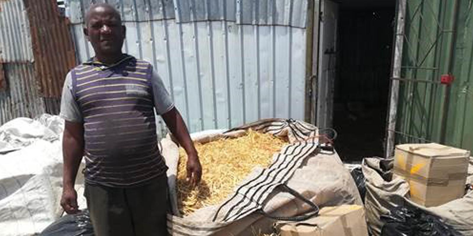 Den Nutztieren in Kapstadt geht es besser