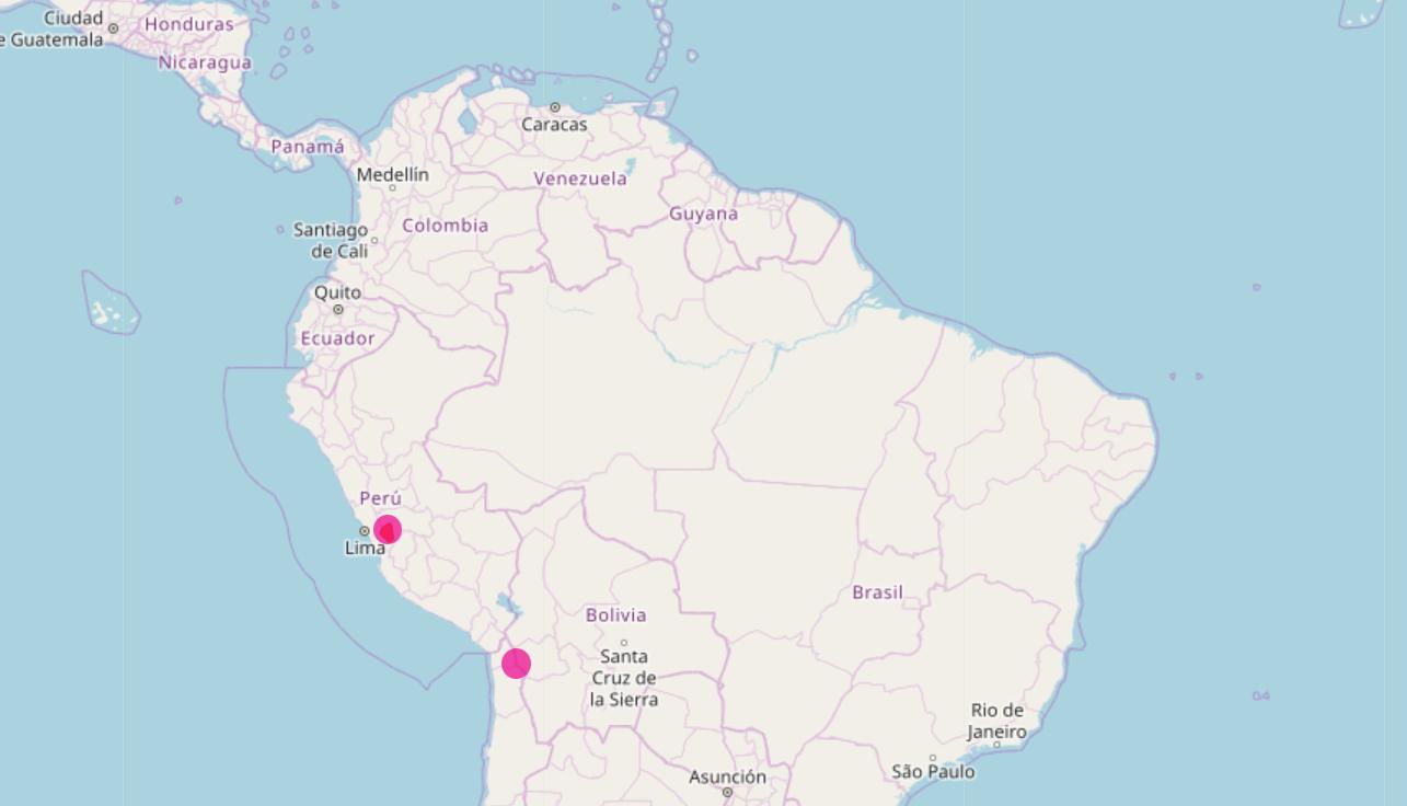 Vicuñas, Alpakas und Lamas in Südamerika
