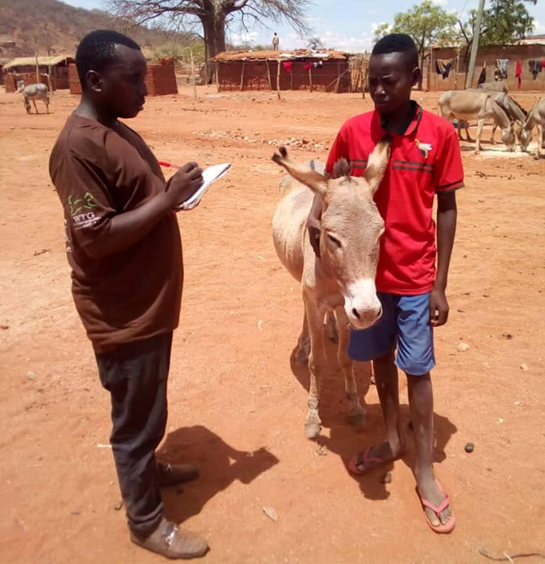 Akute Tierhilfe in Tansania