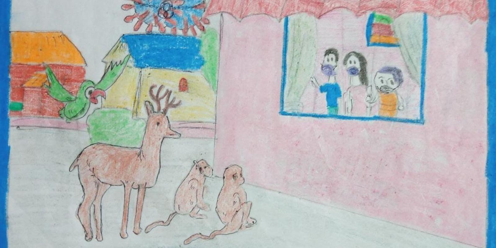 Tierschutzbilder aus Indien