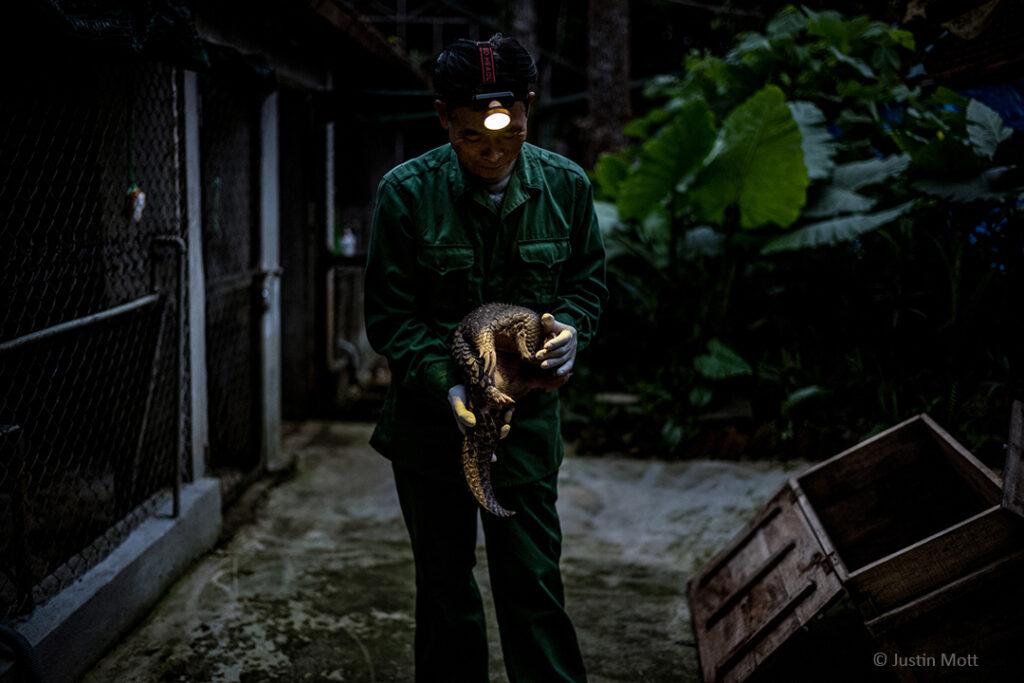 """""""Bei meinem Besuch in der Pflegestation von Save Vietnam's Wildlife beobachtete ich, wie sich die Pfleger*innen und Tierärzt*innen unermüdlich rund um die Uhr – auch nachts – um die Tiere kümmerten, um sie bestmöglich aufzupäppeln und für die Rückkehr in ihr Zuhause in den Regenwäldern Vietnams bereit zu machen."""""""