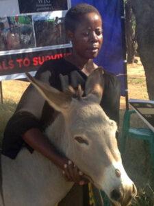 WTG-Nothilfefonds: Für den Schutz der Tiere in Tansania