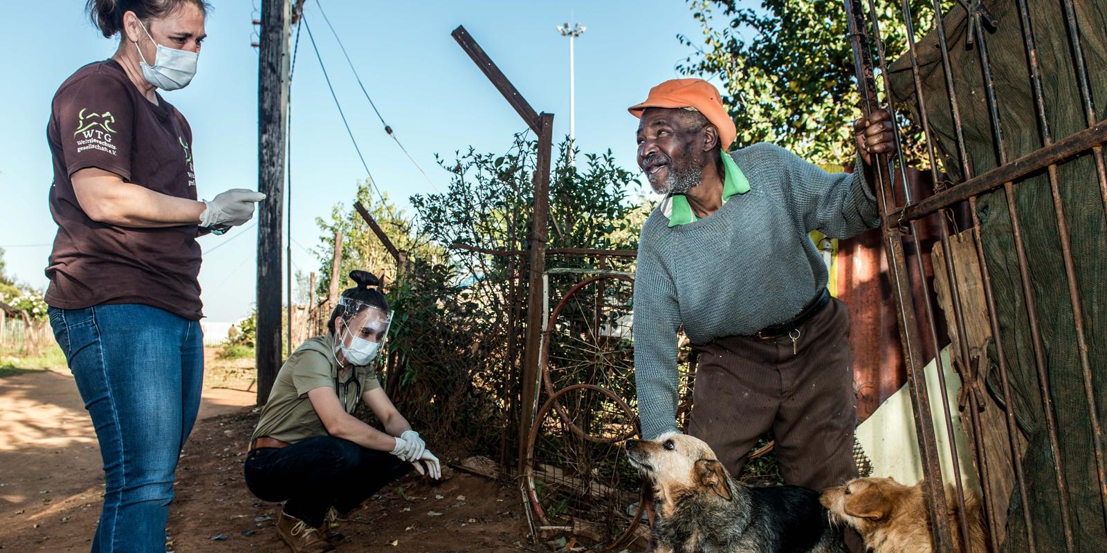 WTG-Nothilfefonds: Für den Streunerschutz in Südafrika