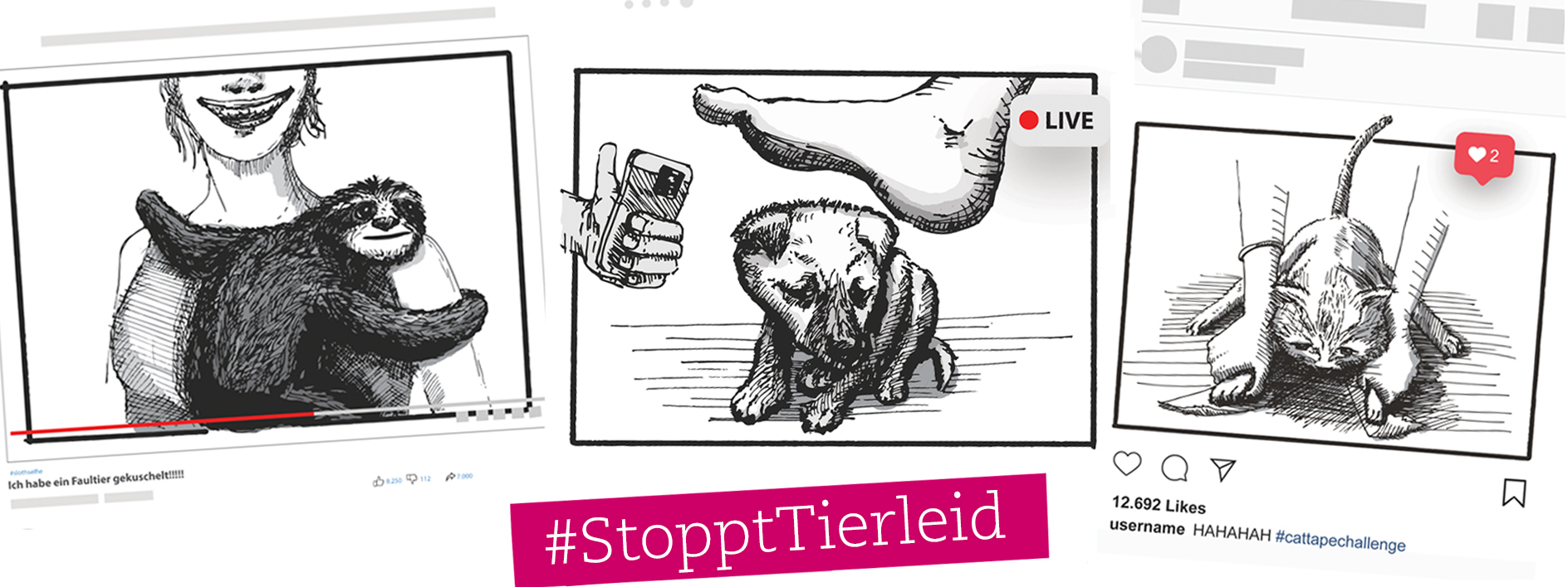 Kampagne: Stoppt Tierleid in den sozialen Netzwerken
