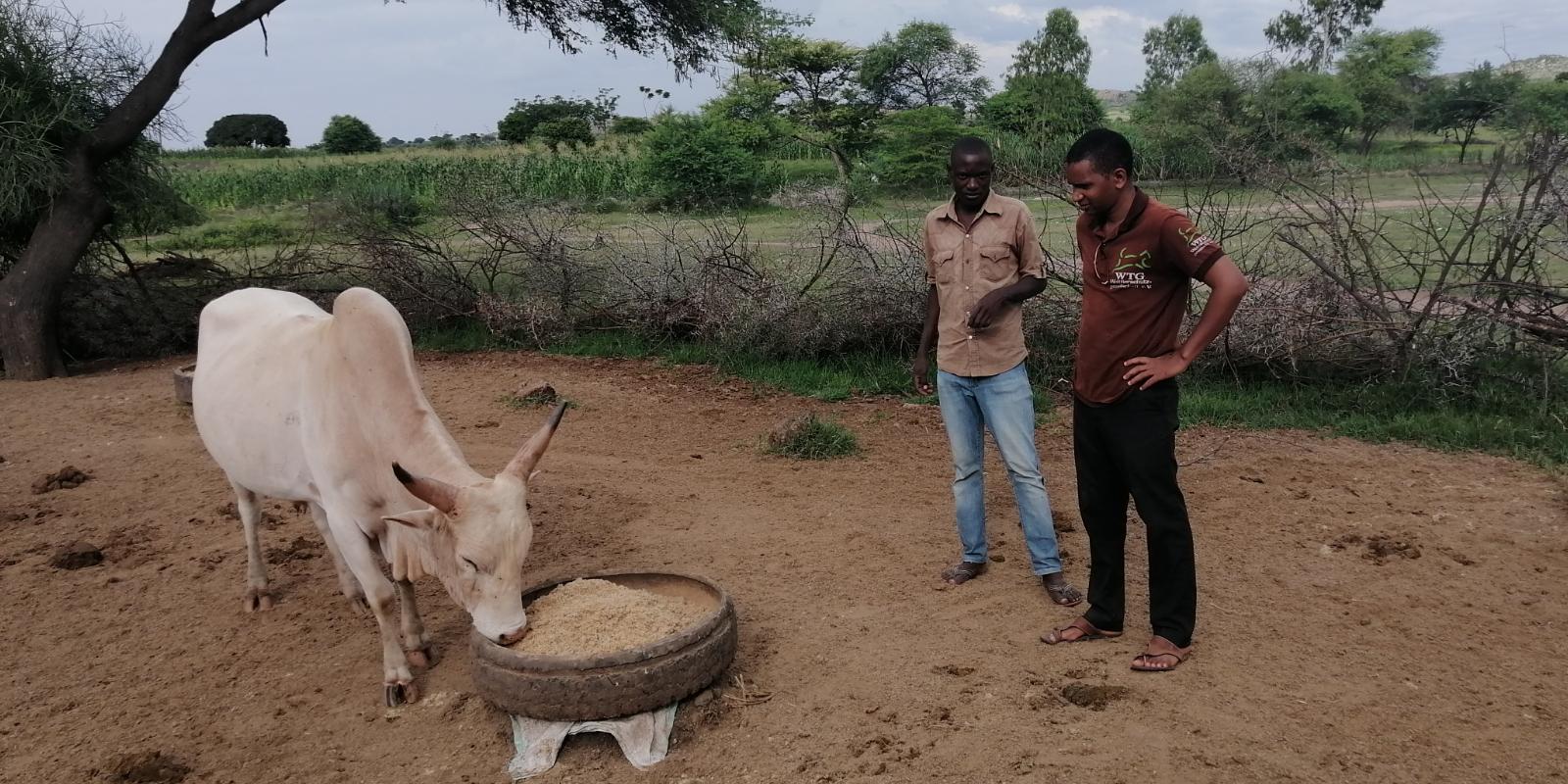 Soforthilfe Wetterextreme Tansania