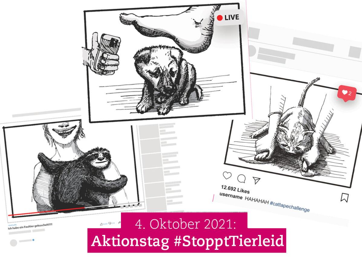 aufmacher-aktionstag-newsletter